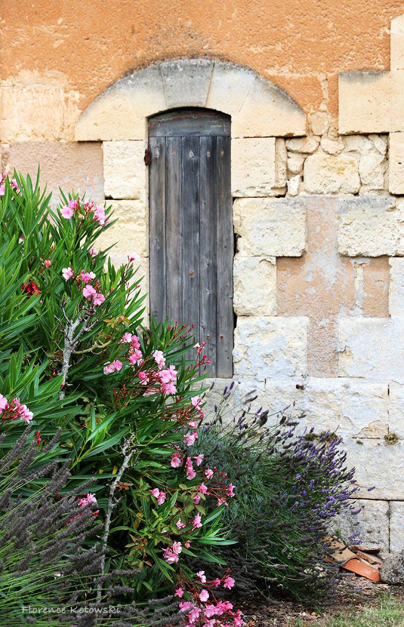 Florence Kotowski - summer 2016 - Garen Corner with Lavendel and Oleander