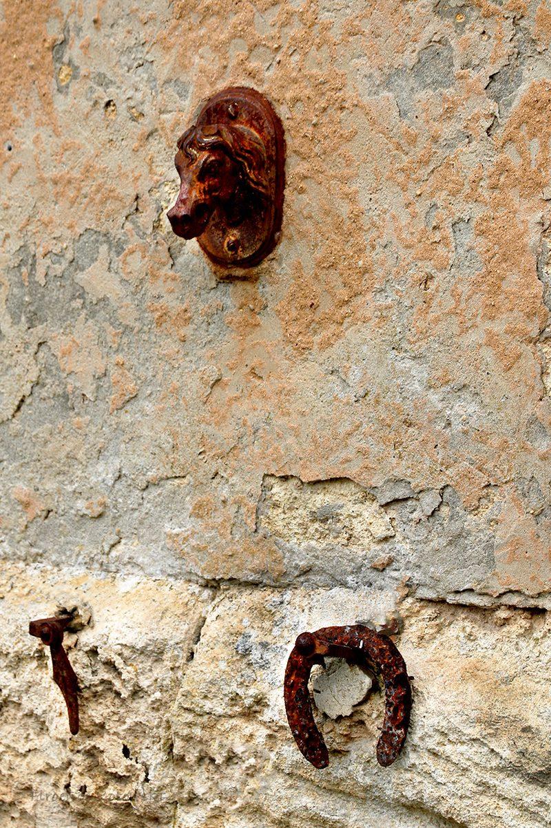 Florence Kotowski - Garden Corner - lucky horseshoes